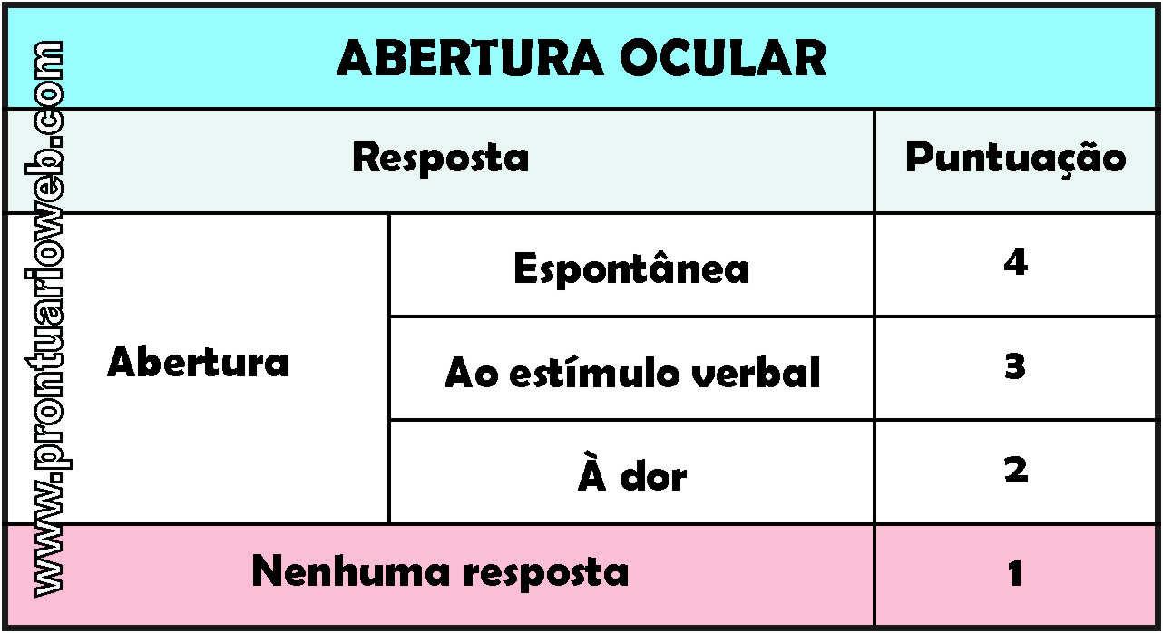 abertura ocular português - prontuarioweb