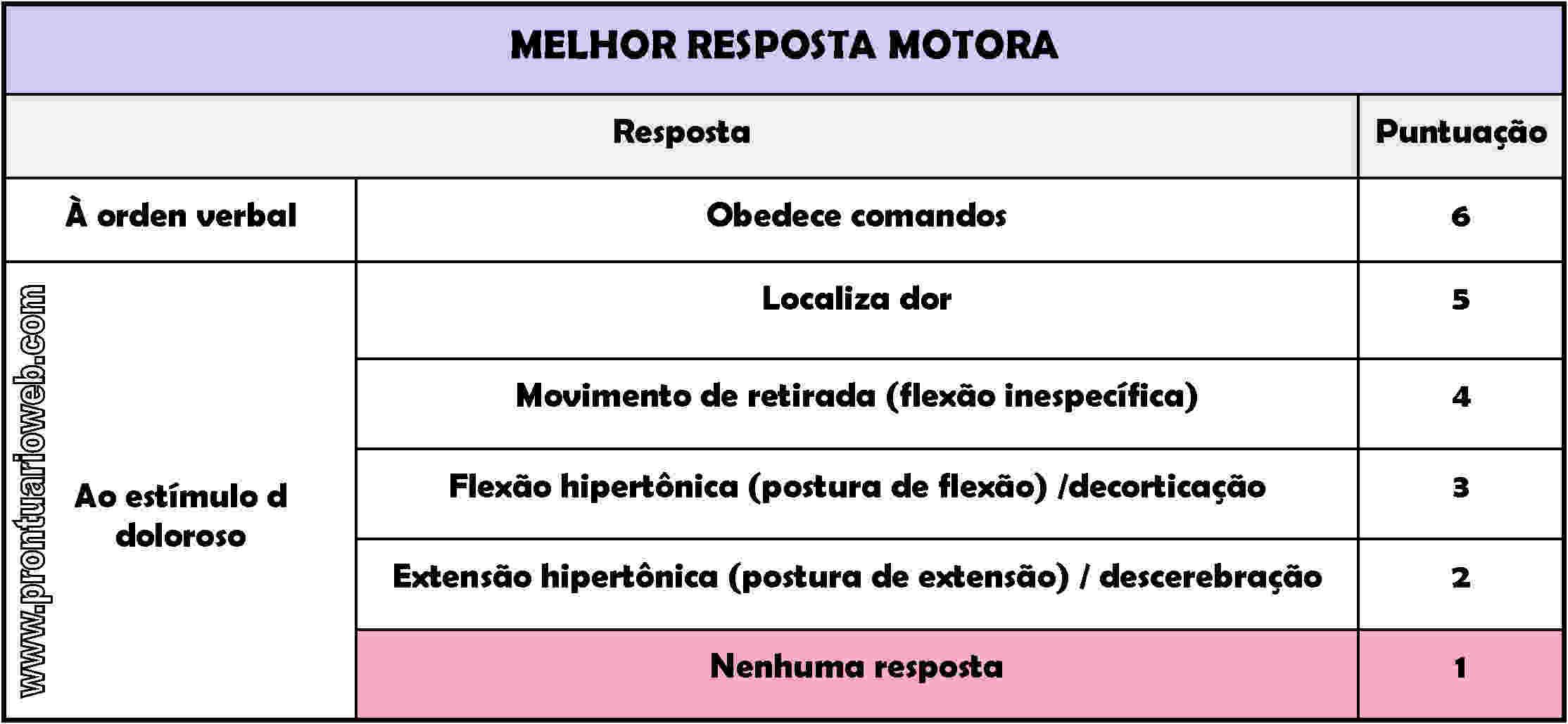 resposta motora português - prontuarioweb