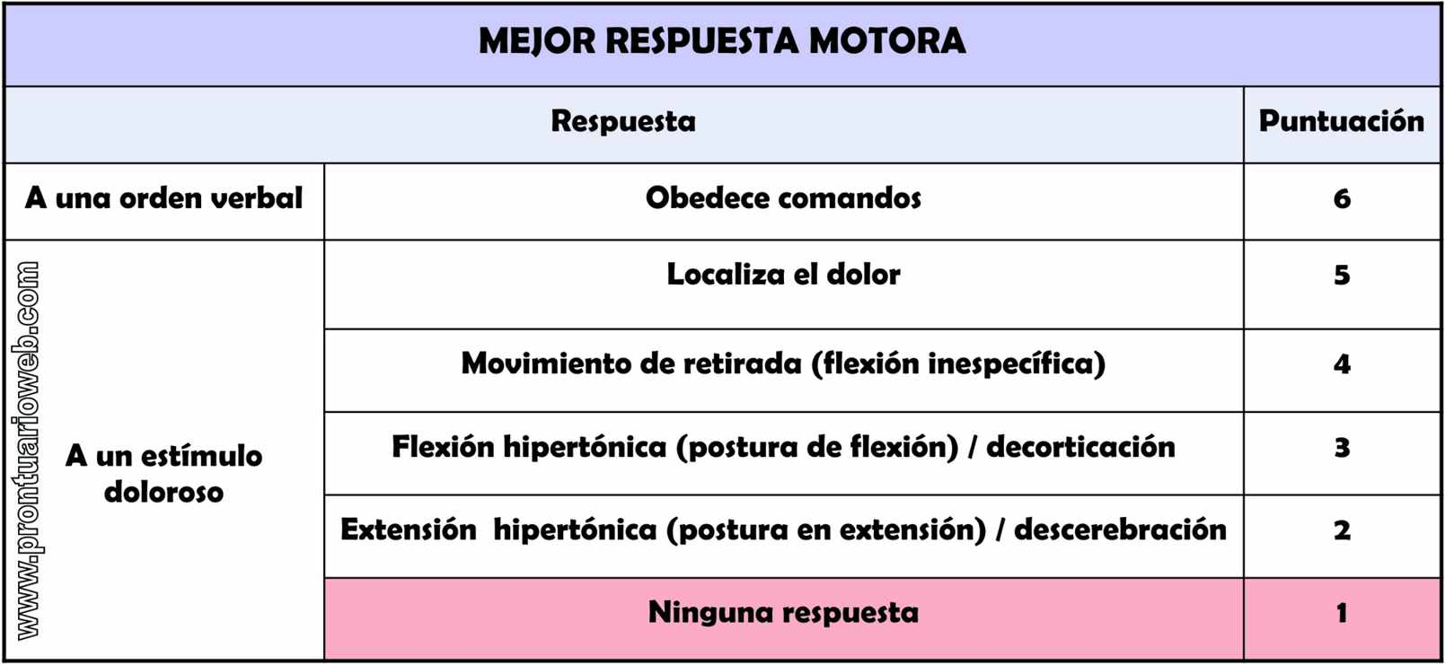 respuesta motora español - prontuarioweb